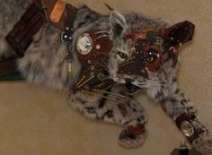 I am not sure I would want a taxidermed animal in my home, but this is an interesting take on a bobcat. Cyborg Wildcat Taxidermy