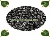 Kara Sırık Şeker Fasulye Tohumu http://www.fidanistanbul.com/urun/995_kara-sirik-seker-fasulye-tohumu-.html Fidan Satışı, Fide Satışı, internetten Fidan Siparişi, Bodur Aşılı Sertifikalı Meyve Fidanı Süs Bitkileri,Ağaç,Bitki,Çiçek,Çalı,Fide,tohum,toprak