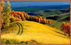 Γη και Ελευθερία.: Ψυχή φευγάτη. Poetry, Country Roads, Poetry Books, Poem, Poems