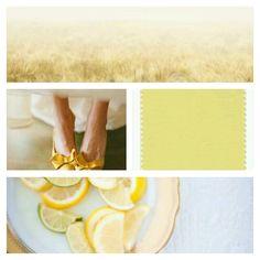 #custard #pantonecoloroftheyear #spring2015 #pantone #nanamarie #nanamarie_com #inspiration