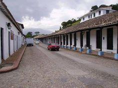 Rubio - Tachira