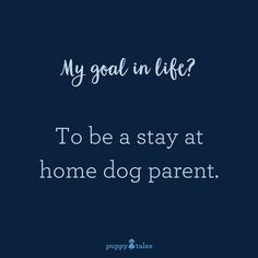 Thats my life - Funny Dog Quotes - Thats my life The post Thats my life appeared first on Gag Dad. Puppy Quotes, Dog Quotes Funny, Funny Dogs, Humor Quotes, Animal Quotes, I Love Dogs, Puppy Love, Cute Dogs, Doberman Pinscher