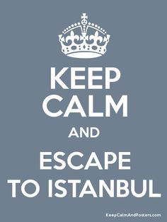 Click Through to Book a Gorgeous Vacation Apartment :: a Small Palace in Istanbul !!