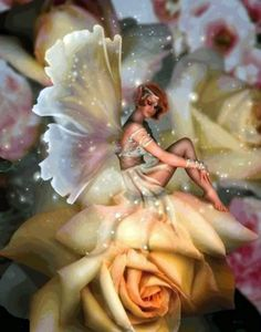≍ Nature's Fairy Nymphs ≍ magical elves, sprites, pixies and winged woodland faeries - on flowers Fairy Dust, Fairy Land, Fairy Tales, Fantasy World, Fantasy Art, Kobold, Fairy Pictures, Love Fairy, Beautiful Fairies