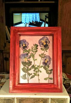 Real Pressed Purple Blue Yellow Pansies on Watercolored Art Card, 5 x 7 Framed in Rustic Red Wooden Frame by FlowerFelicity