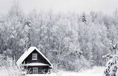 yes i love winter...my dream home sees all the seasons..