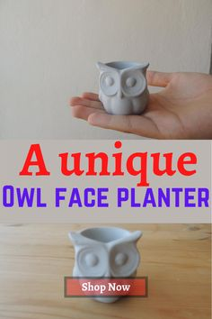 #smallplanter one of the smallest planters you can findd online for your small #succulents Face Planters, Small Succulents, Concrete, Etsy Seller, Invitations, Group, Board, Garden, Tableware