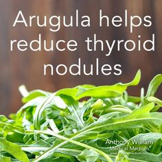 Nutrition & santé : Illustration Description Arugula helps reduce thyroid nodules Learn more about the healing powers of arugula in my new book Thyroid Healing, link in bio Thyroid Nodules, Thyroid Diet, Thyroid Health, Hypothyroidism, Health Facts, Health And Nutrition, Health And Wellness, Thyroid Nodule Treatment, Thyroid Problems