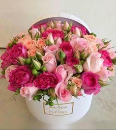 Beautiful Flower Arrangements, Pretty Flowers, Pink Flowers, Floral Arrangements, Birthday Flower Arrangements, Fresh Flowers, Pink Roses, Flower Box Gift, Flower Boxes