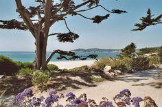 Carmel, CA : Carmel Beach