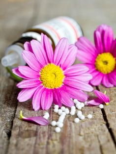 Globuli, Kräuter oder Blüten? Homöopathie, Klostermedizin oder bewährte Hausmittel? Nie mehr Schmerztabletten! Probieren Sie aus, was Ihnen am besten hilft.