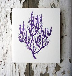 Seaweed Letterpress Notebooks