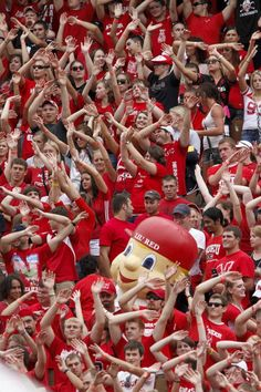 Husker Fans!  Love it when we get to do the wave....Huskerstyle!  :)