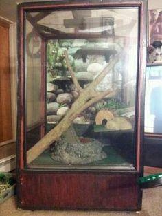 snake/lizard cage