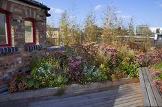 shoreditch roof terrace garden designer