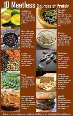 Say no to meat! Other protein sources