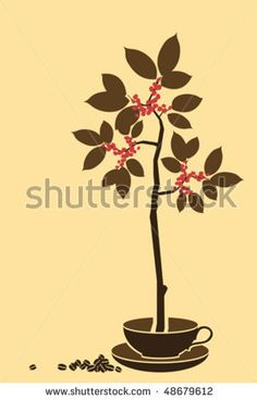 http://image.shutterstock.com/display_pic_with_logo/562420/562420,1268598419,7/stock-vector-growing-coffee-tree-48679612.jpg