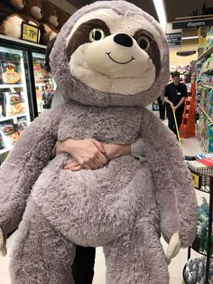 safeway find #aww #Cutesloths #sloths #boopthesnoot #cuddle #fluffy #animals #aww #socute #puppy #bestfriend #itssofluffy