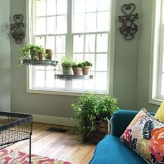 """There's always room to add more plants… 