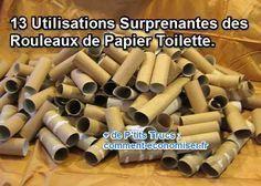 13 Utilisations Surprenantes des Rouleaux de Papier Toilette.                                                                                                                                                                                 Plus
