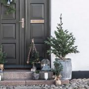 Christmas Decorations, Nice Asses, Christmas Decor, Christmas Tables, Christmas Jewelry