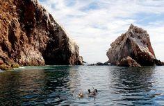 La Isla del Farallón en #Sinaloa a 27 km mar adentro es un refugio de lobos marinos y focas. http://ift.tt/1PbgRX2