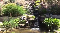 Pond Gnome - YouTube