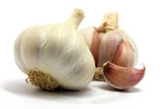 The Healing Wonders of Garlic