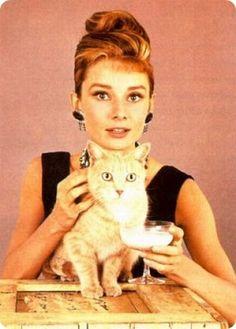 Audrey Hepburn - Famosos y sus gatos