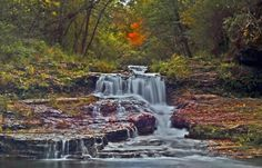 taken in river falls wi, had a great outing with my dad, the fall colors were just getting started Wisconsin, Waterfall, Environment, River, Outdoor, Colors, Outdoors, Calla Lily, Waterfalls