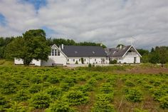 Langebakke 4, 2., 8680 Ry - Højlund, liebhaver ejendom ved Ry #ry #liebhaver #landejendom #boligsalg #selvsalg