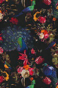 Behangexpresse Instawalls Botanisch/Vogels/Pauw/Planten Behang Wallpaper no. Quirky Wallpaper, Wallpaper Decor, Vinyl Wallpaper, Home Wallpaper, Colourful Living Room, Peacock Bird, Botanical Flowers, Exotic Birds, Room Colors