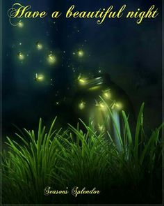 Lightning bugs, oh what great memories.  From Seasons Splendor on Facebook.