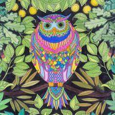 Ana Tuyama crafts: artesanato, vida, familia e outras manias...: Jardim Secreto, o livro de colorir