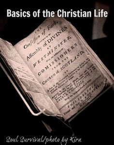 """""""Basics of the Christian Life: a Checklist"""" - All of God's Word is valuable for teaching us to live a God-honoring life, but today's New Testament reading contains a great synopsis of the basics of the Christian life.  Also read about God's incredible patience and the reason God may be allowing some unpleasant circumstances in our lives."""