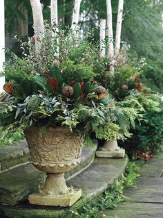 Beautiful Winter Urns featuring Birch Poles, Magnolia, Cedar, and Eucalyptus.