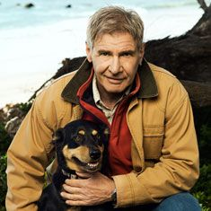 Photo of Harrison Ford & his  Dog