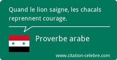 Quand le lion saigne, les chacals reprennent courage. Proverbe arabe