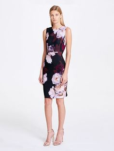 22aa5234b7a7ff Image for floral print sheath dress from Calvin Klein Stretch Dress