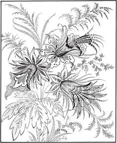 Welcome to Dover Publications Creative Haven Floral Inspirations Coloring Book Davlin Publishing Coloring Book Pages, Printable Coloring Pages, Coloring Sheets, Mandala Art, Zentangle, Doodle Coloring, Dover Publications, Dot Work, Floral Illustrations