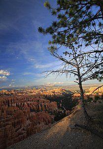 Photograph - Sunset Colours Bryce Canyon 3 by Mo Barton