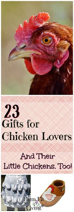 """Are you looking for the perfect gifts for chicken lovers in your life? Here's a gift guide for chicken lovers designed to make you say, """"Uh Uh"""" and """"Oh Yeah!""""  via @www.pinterest.com/farmfitliving"""