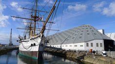 HMS Gannett by Wilhelmina Frame