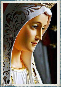 Santa María, Madre de Dios y Madre nuestra: ¡Salve, Redención de las lágrimas de Eva!