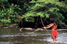 Amazon Jungle, Brazil: Internet Indians On the Attack - A tribe is using the internet to tackle the logging mafias targeting their villages.