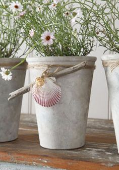 Tara Dennis - Create your own lime washed pots