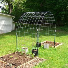 Wire Fencing Arbor For Climbing Vegetables.