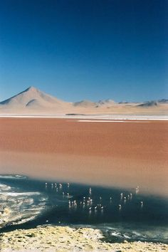 Sea of Salt, National Park Salar de Uyuni, Bolivia. Uh! I've been to the Chilean Salt Lakes, but I heard the ones in Bolivia are incredible too!