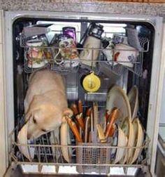 Redneck style dishwasher