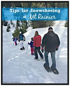 If you're looking for a fun way to get out into the snow, consider snowshoeing at Mt Rainier! Not only is it more affordable than you think, but very fun.
